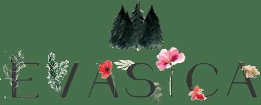 Evasica Logo